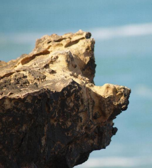 Quelques photos prises le long de la c&ocirc&#x3B;te sud marocaine. Ce sont des t&ecirc&#x3B;tes de rochers, au hasard des promenades dans les falaises qui longent l'Atlantique.