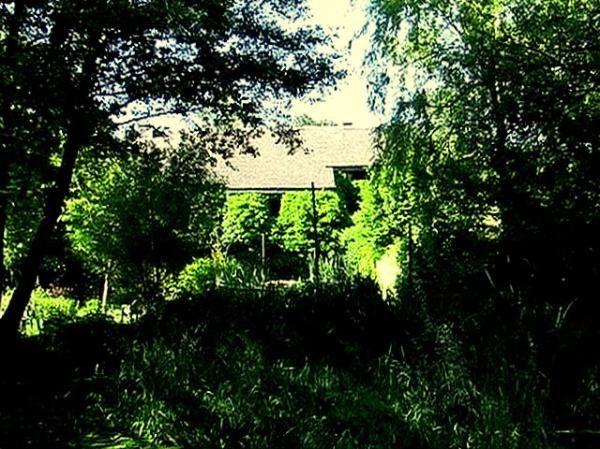 Le territoire sur lequel je vis, région de Saint-Hubert-Libramont, ardennes belges