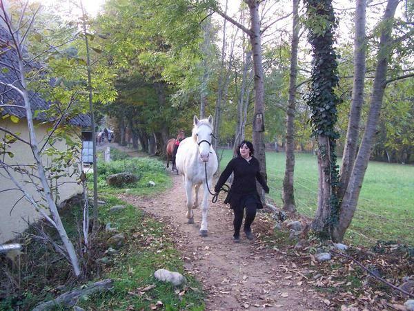 D&eacute&#x3B;fil&eacute&#x3B; &agrave&#x3B; Argel&egrave&#x3B;s-Gazost le 3 novembre 2007. Les chevaux partis du Bourdalat et apr&egrave&#x3B;s avoir travers&eacute&#x3B; le Balandrau rejoignent les poneys &agrave&#x3B; la place Vieuzac pour un d&eacute&#x3B;fil&eacute&#x3B; d&eacute&#x3B;guis&eacute&#x3B; aux couleurs d'Halloween autour de la ville. Tout le monde se retrouve ensuite au Bourdalat pour un go&ucirc&#x3B;ter festif.