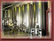 -&nbsp&#x3B; Cin&eacute&#x3B;ma le Gaumont - Film &quot&#x3B;La M&ocirc&#x3B;me&quot&#x3B; Edith Piaf (photos 1 &agrave&#x3B; 7)<br />-&nbsp&#x3B; Spectacle donn&eacute&#x3B; par les r&eacute&#x3B;sidents et le personnel de la r&eacute&#x3B;sidence &quot&#x3B;Ballade &agrave&#x3B; Paris&quot&#x3B;<br />&nbsp&#x3B;&nbsp&#x3B; (photos 8 &agrave&#x3B; 15, 17, 23, 24, 26<br />- Un dimanche au cirque : (photos&nbsp&#x3B; 16, 18 &agrave&#x3B; 22, 25)<br />- Sortie au centre commercial en p&eacute&#x3B;riode de No&euml&#x3B;l ( photos 27 &agrave&#x3B; 36)
