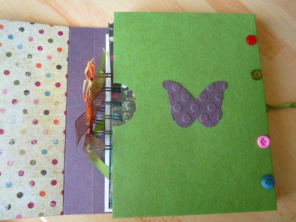 Album - Mini-papillons