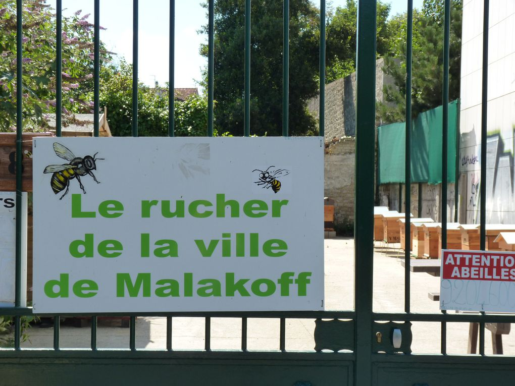 Album - photos-de-malakoff