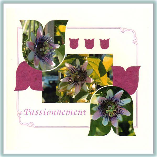 Album -   a) Mes pages AZZA