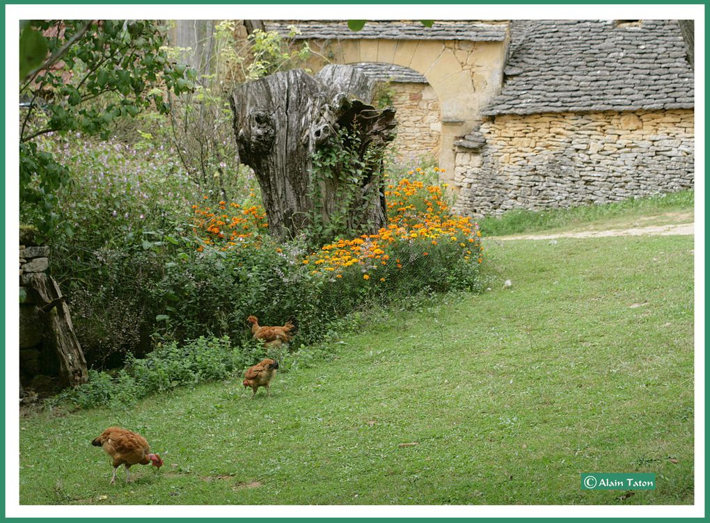 Album - les-cabanes-du-Breuil