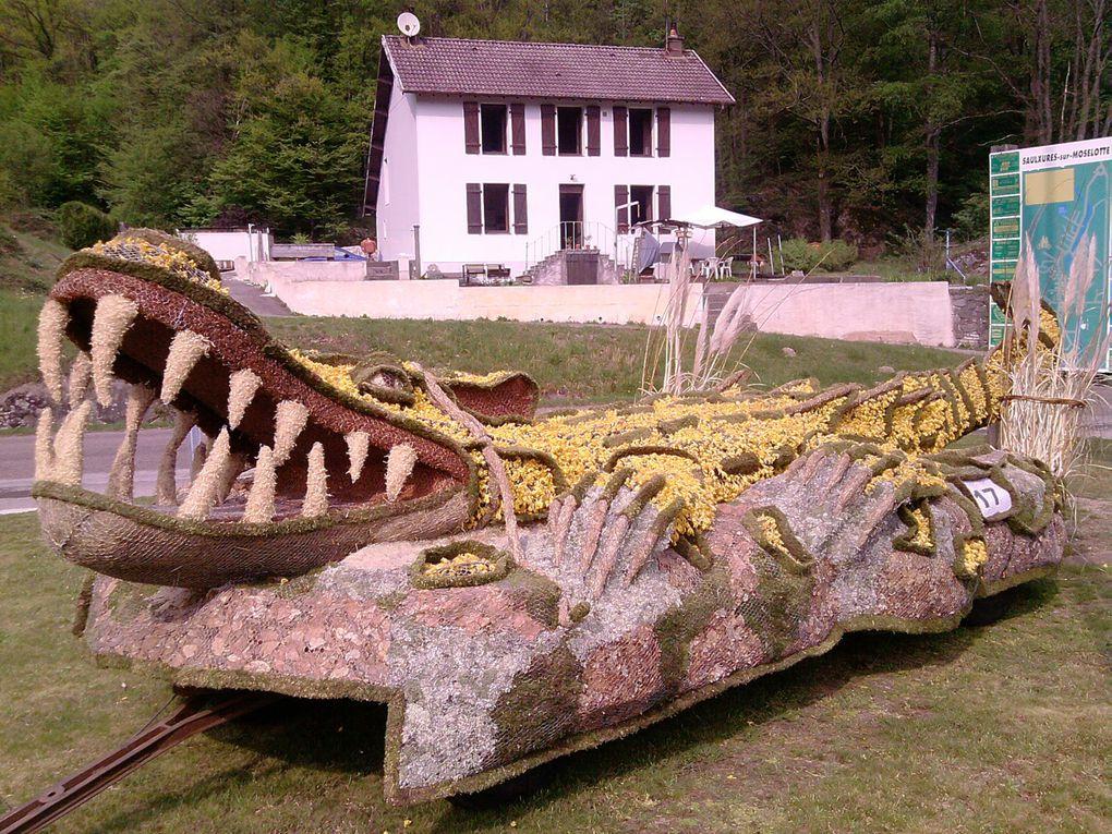 Le char confectionné par des habitants de SAULXURES pour la fête des Jonquilles de Gérardmer