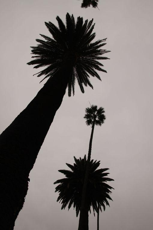 Album - USA-2009