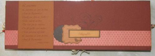 Album - Cadeaux des scropines #1