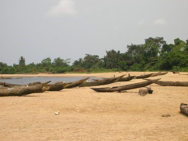 La Lobé est un fleuve qui traverse la forêt et se jette dans l'océan par des cascades.