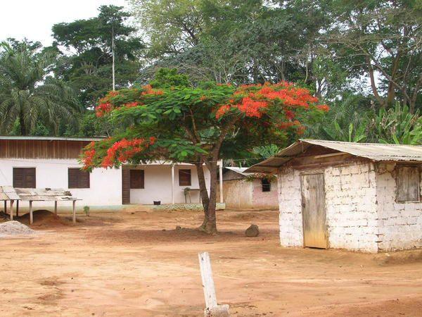 Sous-préfecture du Dja et Lobo dans la province du Sud