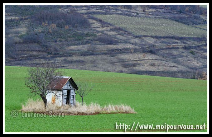 photos diverses d'auvergne