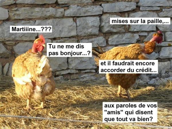 Album - Martine et Pétula05102008