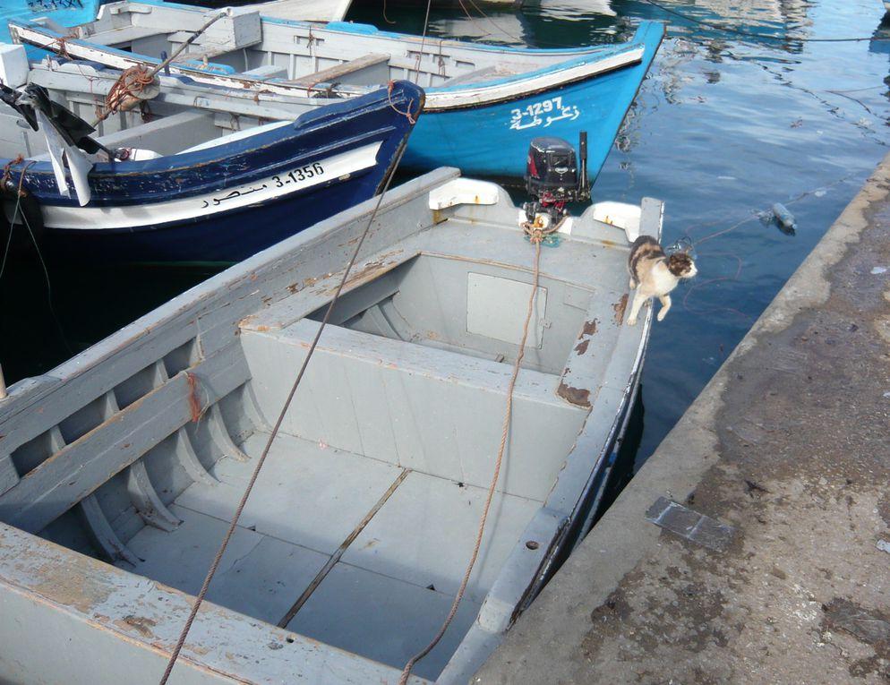 Photos de TangerCasa barataPort de Tanger