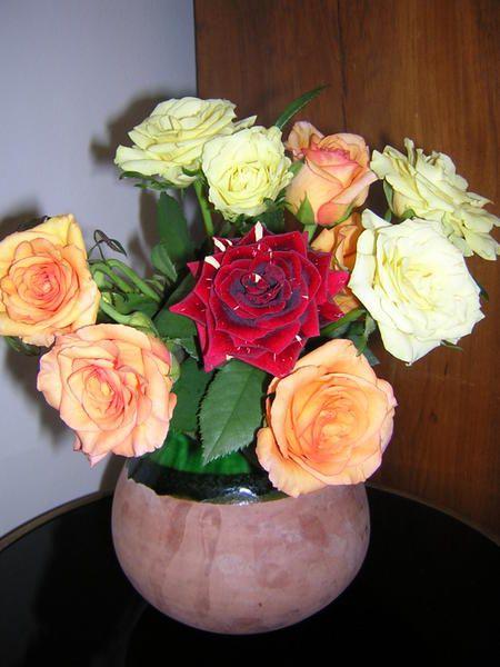 beaucoup de fleurs