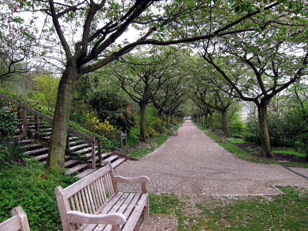 Aux jardins de Vvalloires et son retaurant..en mai