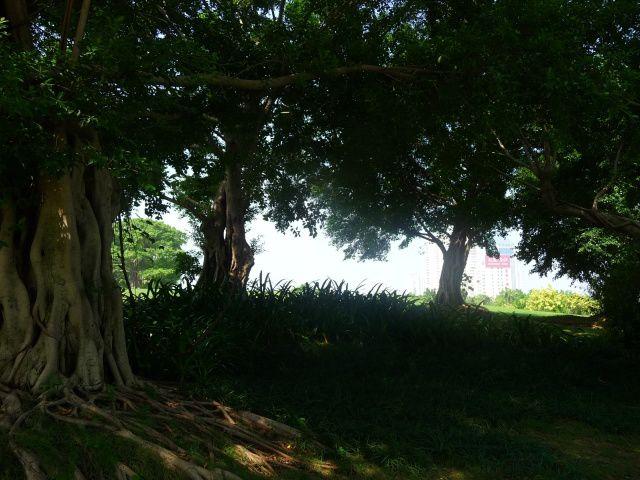 Le magnifique parc du lac du Sud de Nanning...