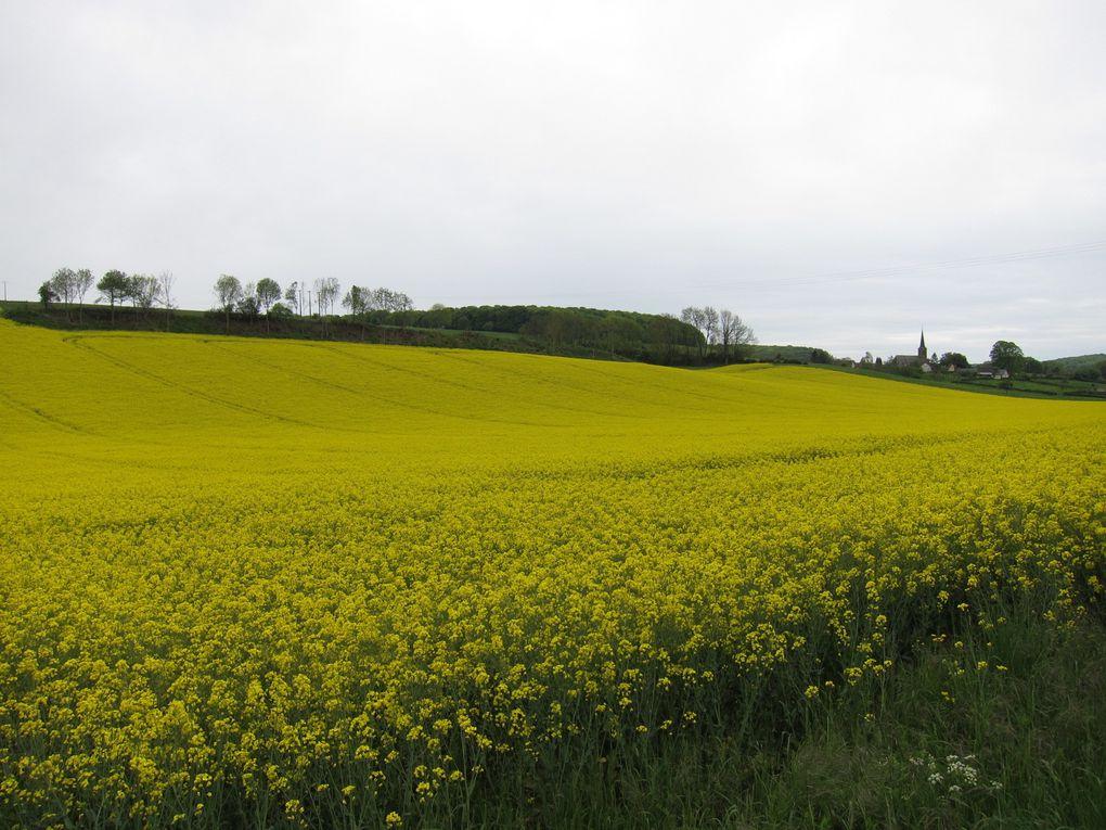 Sortie  tourisme et jardins en Normandie au gré de nos envies!