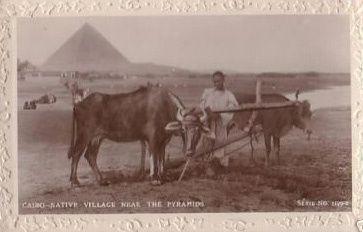Mes collections numismatique et de cartes postales et photos anciennes d'Egypte.