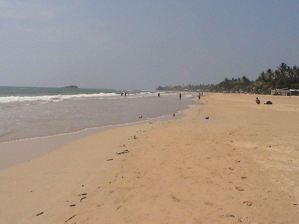 Photos d'un séjour de 3 semaines au Sri Lanka.