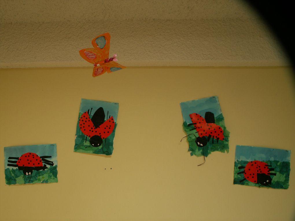 Ecoles fleuries 2008-2009Etude d'un écosystème