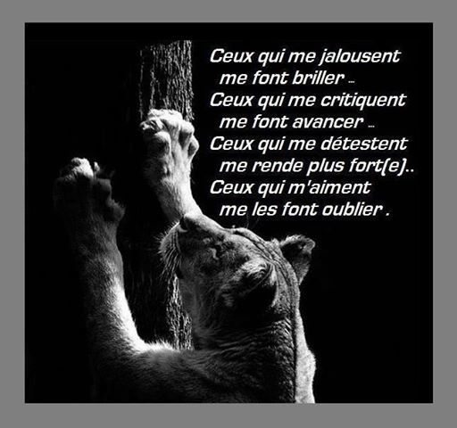 Album - Citations