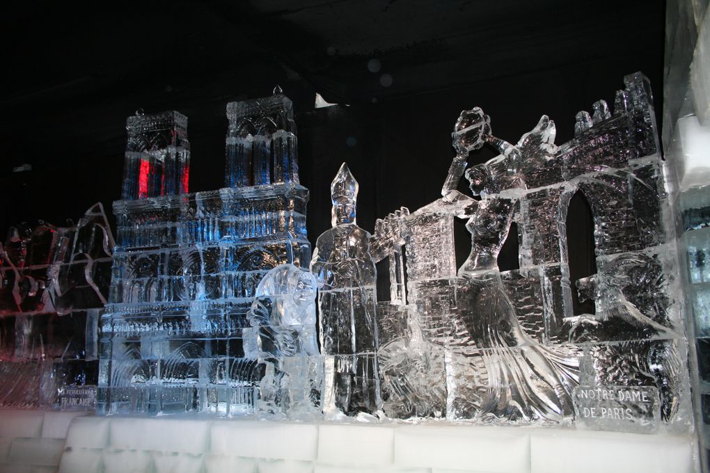 Expo 2006 Yann Arthus-Bertrand et WWF