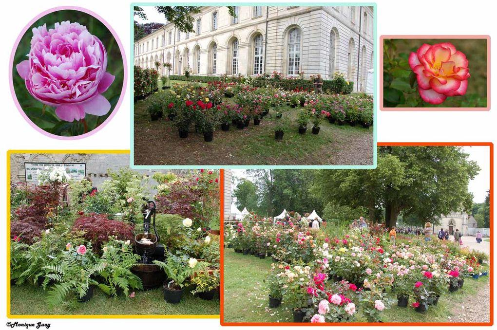 En ce dimanche 13 juin 2010 lors des Journées de la rose à Chaalis (60)