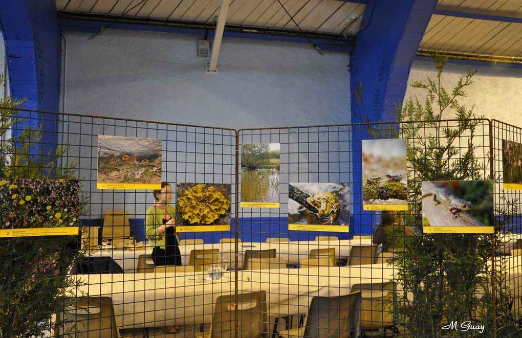 Les 5, 6 et 7 novembre 2010 au Palais des Sports.EAU, ENERGIE et ECO-LOGIS étaient les thèmes principaux.