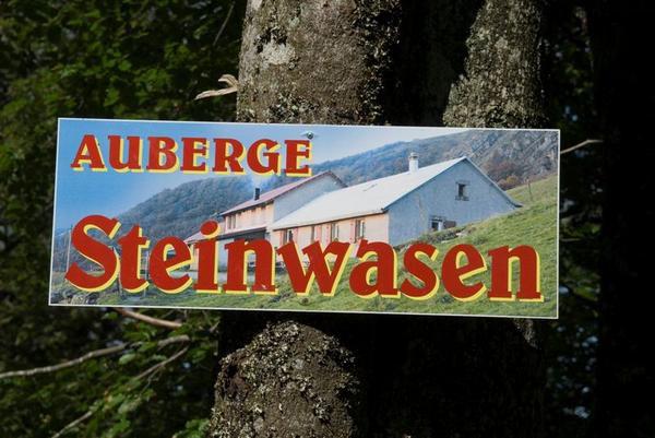 Altenberg, bussang cascades,Gommkopf, Moutier des Fées, lac de la Lande,Taennchel,Rothenbachkopf,Bollenberg, Sapois, Steinwasen, tourbière Machais, Trehkopf, Wildenstein, chaume du Grieb...