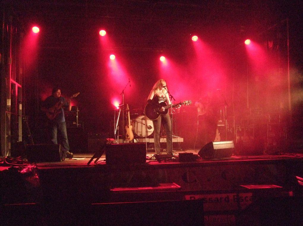 1er Festival des Rednecks Breizh au Chateau de Kerouartz à Lannilis !A ne pas manquer !