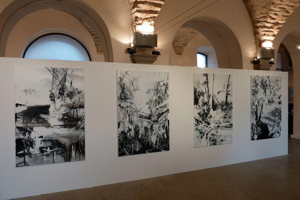 Vues de l'exposition à la galerie Sainte Catherine, à Rodez, du 15 novembre au 22 décembre 2012.