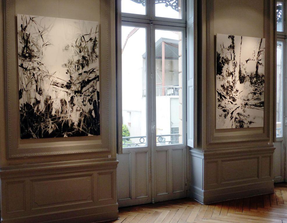 Vues d'expositionCentre Culturel Bellegarde, Toulouse 2012
