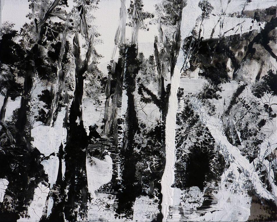 Album - Noir-et-blanc-2013