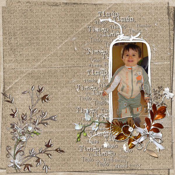 Album -  francis digiscrap