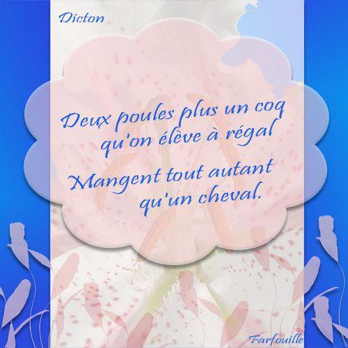 Album - 01 ~ Dictons en Vrac ~ Cartes à imprimer