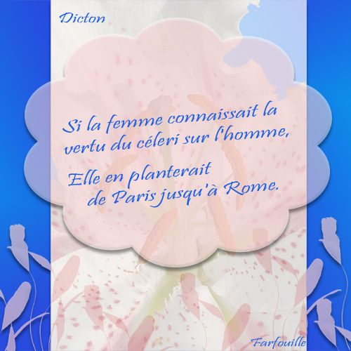 Album - 03 ~ Dictons de Nourriture ~ Cartes à imprimer