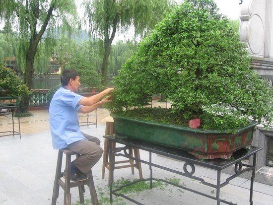 Guangzhou et hangzhou, en Juin 2007