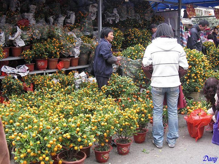 Toutes les photos du nouvel an chinois, des marchés aux fleurs etc...