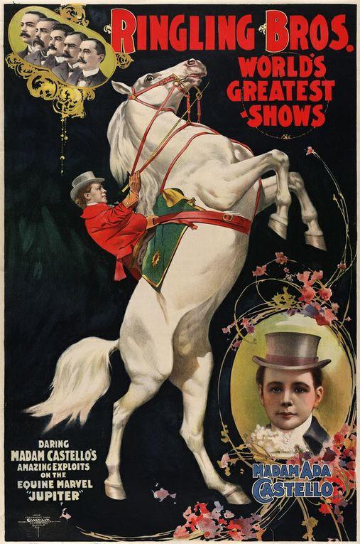 """de la collection monte en amazone virtuelle au merveilleux cheval Shutterfly et sa cavalière Mérédith Michaels Beerbaum, les dieux à la compétition Shutterfly , l'amazone dans l'art, en """"produits dérivés"""", les selles d'amazone.. de tout!"""