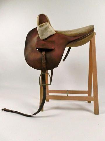 Album - chevaux
