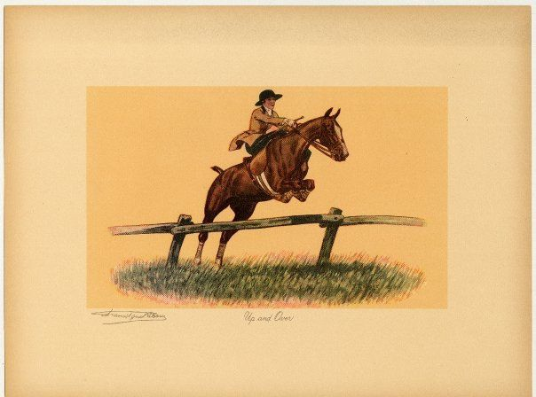 Album - equitation-amazone-art