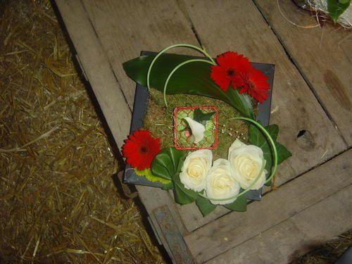 Album - mariage-theme-champetre--blanc-vert-et-coccinelles