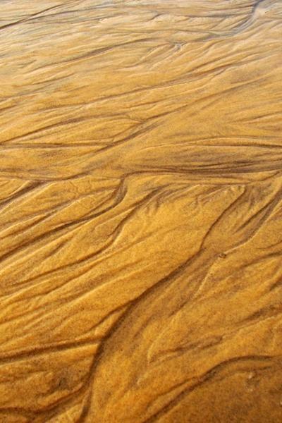 """Cette collection """"Textures en Macrophotographie"""" estessentiellement orientée sur les textures, les formes et les graphismes que nous offrent les éléments de Dame Nature. Beaucoup de ces clichés sont des macrophotographies(photos prises à que"""