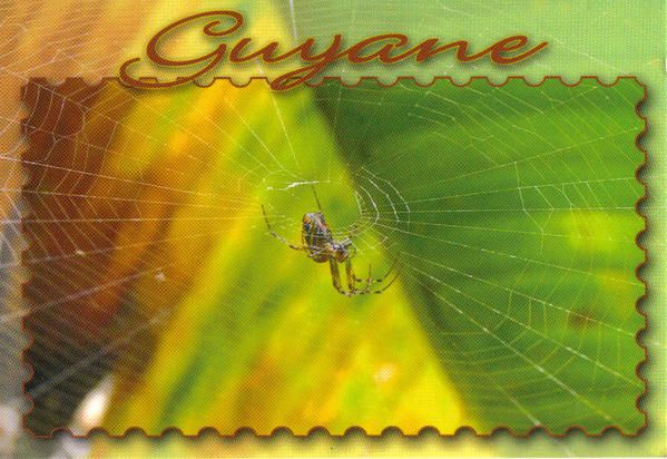 12 cartes postales éditées en Guyane par Cart'as 48