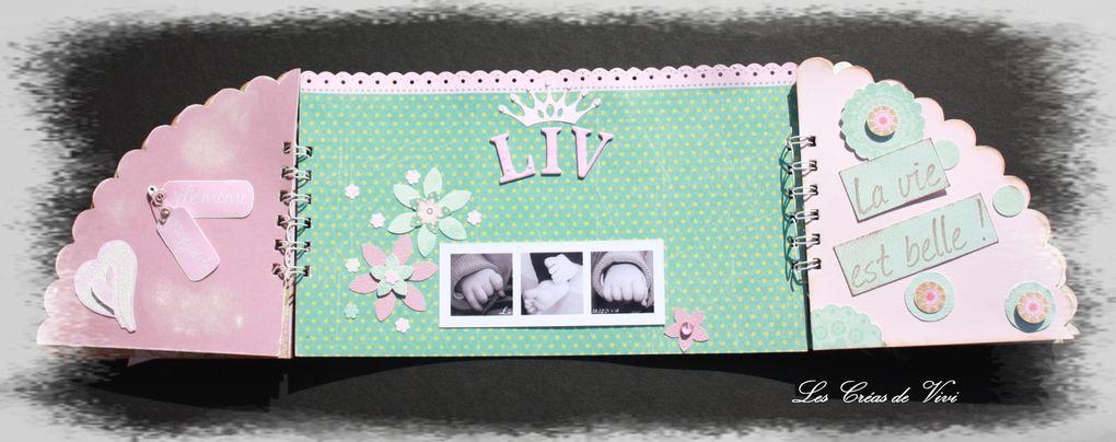 Album - Mini Liv