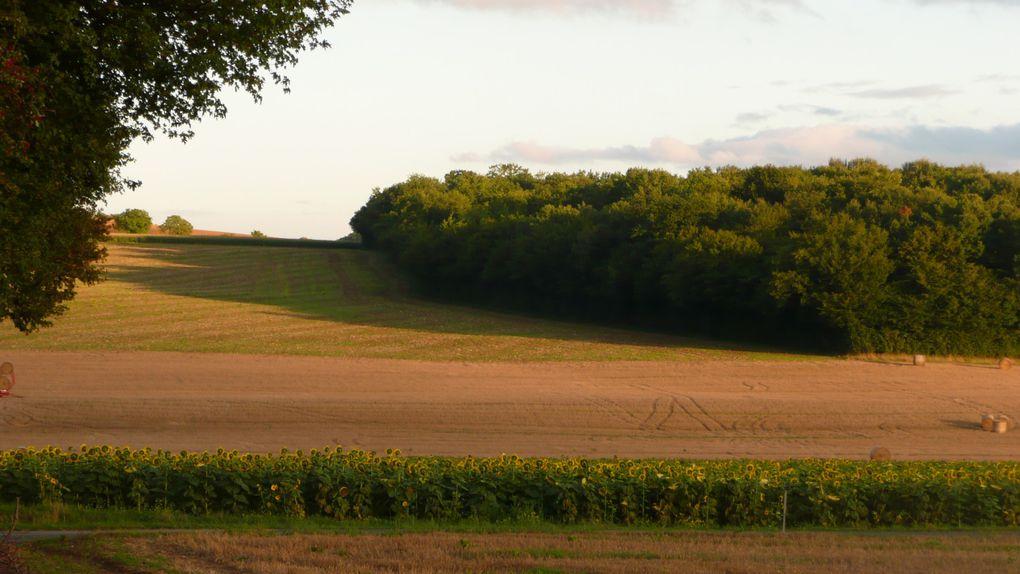 Mer et campagnes...Les Iles Chauset et la Nièvre