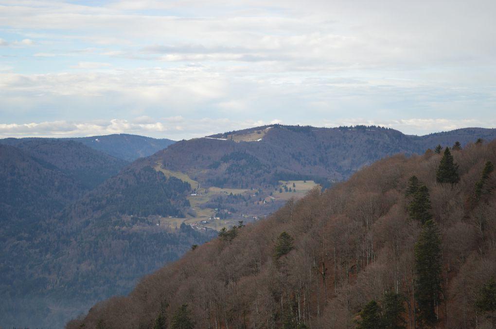 Mise au Vert en montagne
