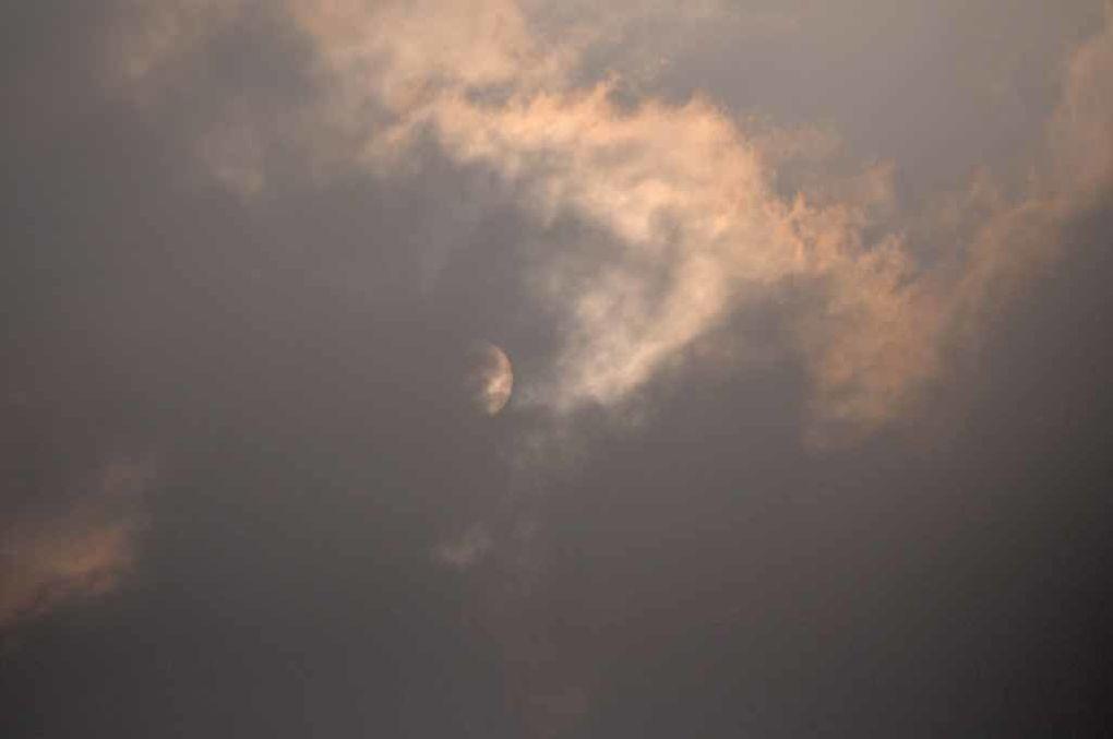Album - Brume-brouillard-2
