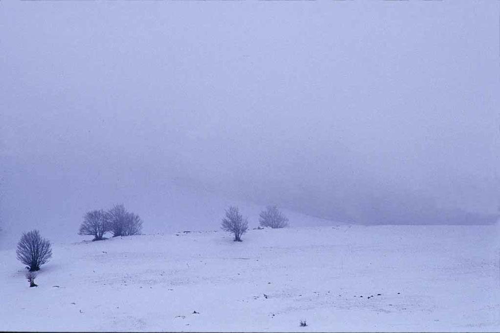 Album - Givre-glace-2