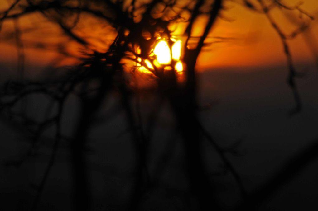 Album - Levers-de-soleil