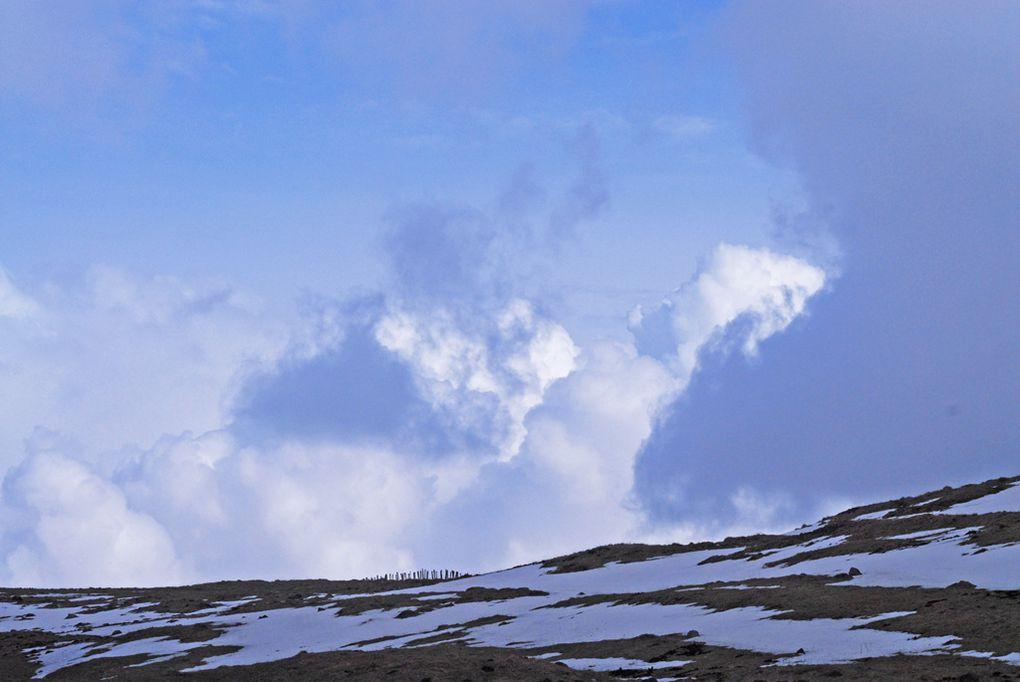 Album - Hiver--givre--neige--glace-.
